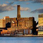 Domino Sugar - Brooklyn, New York by Joel Raskin