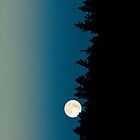 Full Moon Rising I - Best Designs by shifty303