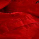 Red by Joanne  Bradley
