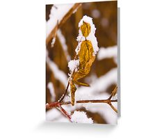 Fall Leaf in Winter Greeting Card