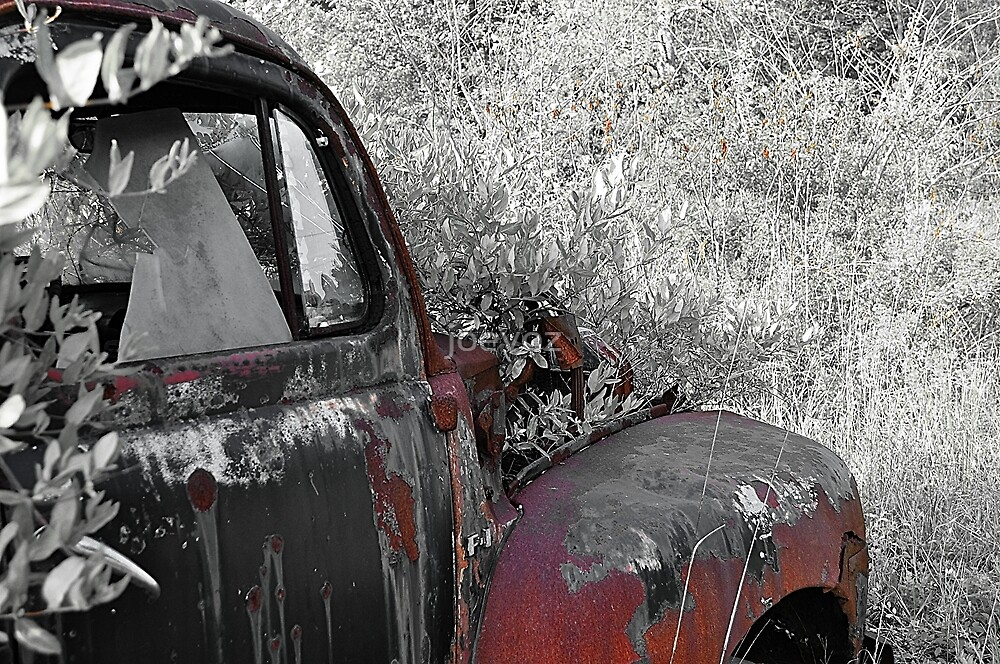 Old truck Fender by joevoz