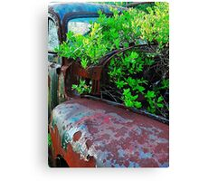 Old truck with tree Canvas Print