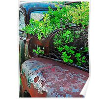 Old truck with tree Poster