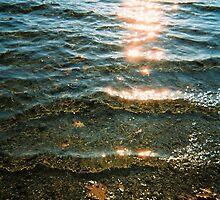 Water's Edge, Sunset, Walden Pond, November 2011 by jenjohnson1968