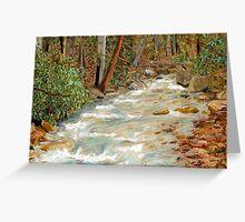 Linn Run, Laurel Ridge, Allegheny Mountains David Olson Greeting Card