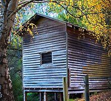 Autumn Hut by pbclarke