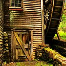 Door to the Old Mill by Barbara  Brown