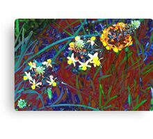 Jewels in the grass Canvas Print