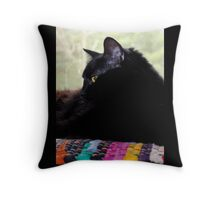 Felis Catus - Black Female Turkish Angora Cat Throw Pillow
