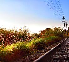 Autumn Railroad by RainyDayPoetry