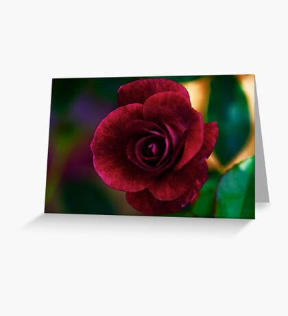 PS3-6-05727 Greeting Card