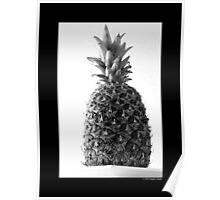 Ananas Comosus - Pineapple Poster