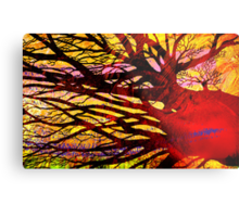 The Unlimited Aspects Metal Print