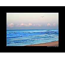Seagulls Flying Over Atlantic Ocean - Smith Point, New York  Photographic Print