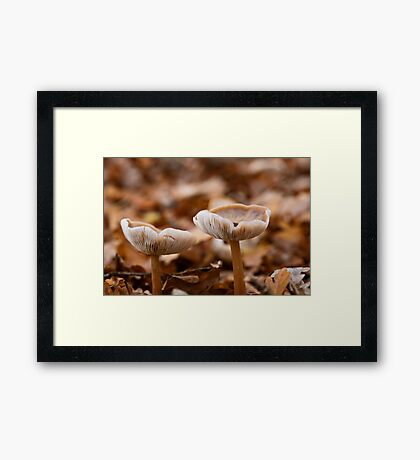 Autumn Collection Cups Framed Print