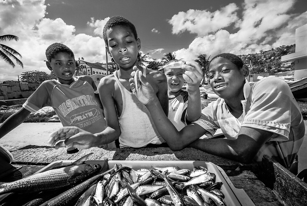 St Lucia, Dennery Fishing Village by Heather Buckley