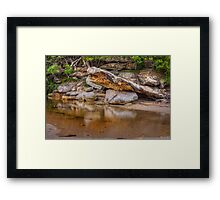 Reflections of nature Framed Print