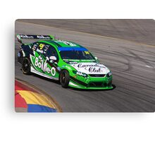 2013 Clipsal 500 Day 3 V8 Supercars - Reynolds Canvas Print