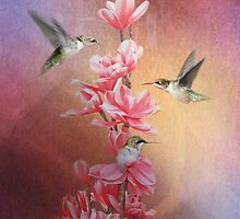Hummingbird by swaby