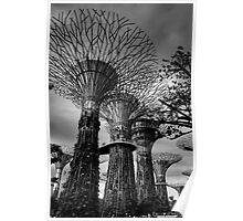 Supertrees Poster
