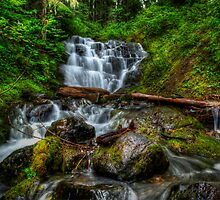 It's Just One Of Thoes Things by Charles & Patricia   Harkins ~ Picture Oregon