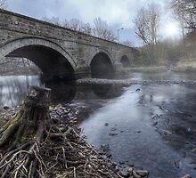 Water Under The Bridge || Bridge over Endrick Water, Fintry by Anir Pandit