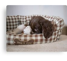 Snug and cosy Canvas Print