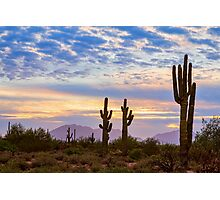 Just Another Colorful Sonoran Desert Sunrise Photographic Print