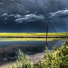 Storm Clouds Saskatchewan billowing clouds and gravel road by pictureguy