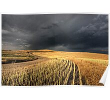 Storm Clouds Saskatchewan over combined canola field Poster