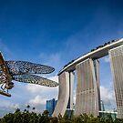 Marina Dragonfly by Trevor Middleton