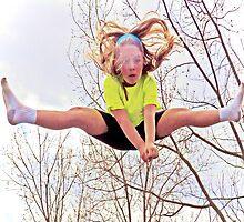 Leap of Faith by Terri Chandler