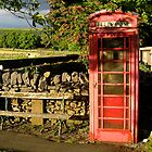 Village telephone box by Greg  Walker