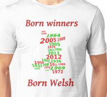 Wales 2013 Champions years Unisex T-Shirt