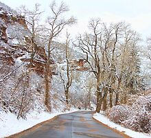Snow Dusted Colorado Scenic Drive by Bo Insogna