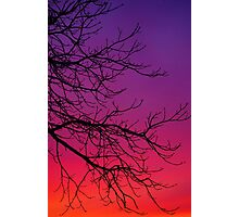 Sunset Colours in February Photographic Print