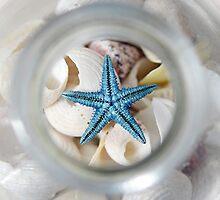 Bottle of Shells by shuttersuze75