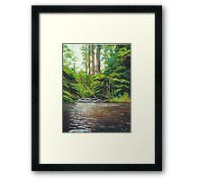 Badger Creek above the Weir Framed Print