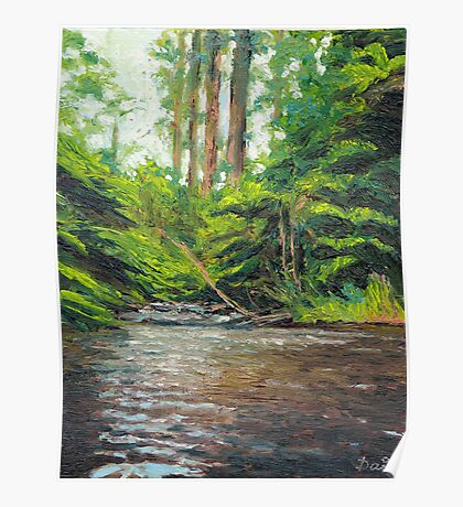 Badger Creek above the Weir Poster