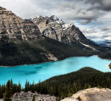Peyto Lake Alberta Canada emerald green color by pictureguy