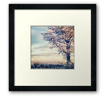 Crystal Tree Framed Print