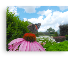 Poser Red Admiral Canvas Print