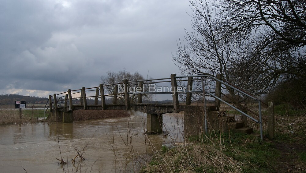 Forests Way Bridge by Nigel Bangert