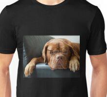 Bordeaux Dog Unisex T-Shirt