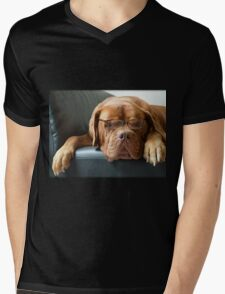 Bordeaux Dog T-Shirt