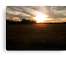 Visions of the Drought Canvas Print
