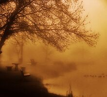 Golden Fog....Snake River...Marsing, Idaho...USA by trueblvr