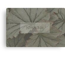 John 3:16 Over Leaves  Canvas Print