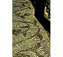 Pebbles and Chains - Granada Photographic Print