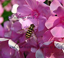 """""""Feed Your Faith"""" by Gail Jones"""
